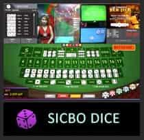 icon-SD